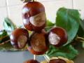 figurki-z-kasztanow-6-papaj