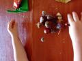 kasztany-2latka-1