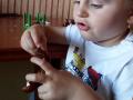kasztany-2latka-2