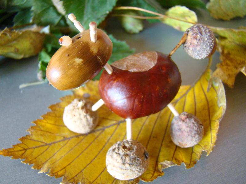 figurki z kasztanów, larwa słonika dębowego